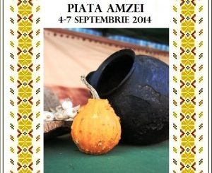 Piata Taraneasca AMZEI