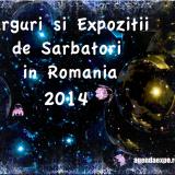 TARGURI SI EXPOZITII DE SARBATORI IN ROMANIA 2014