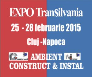AMBIENT CONSTRUCT & INSTAL 2015